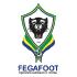 Gabon logo